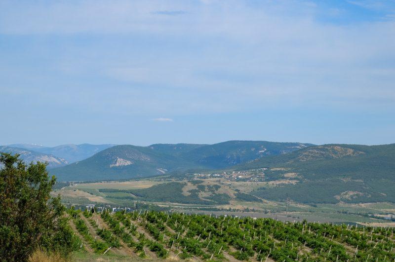 hills of santa maria